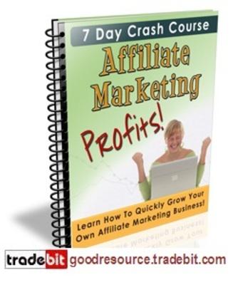 Product picture *New* Affiliate Marketing Profits 7 days Crash Course