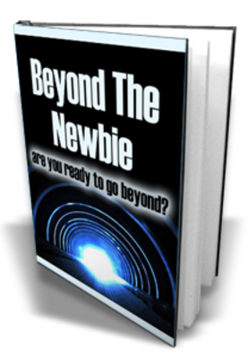 Product picture *NEW* Beyond The Newbie With MRR